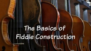 The Basics of Fiddle Build, Construction, and Parts