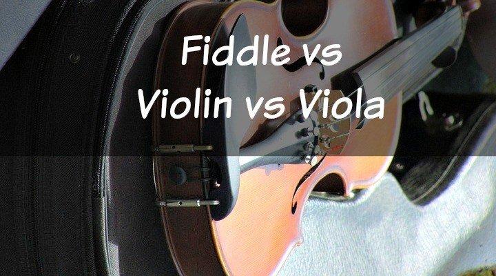 Fiddle Vs Violin Vs Viola What S The Difference Stringvibe