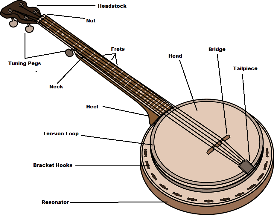 Parts of a Banjo