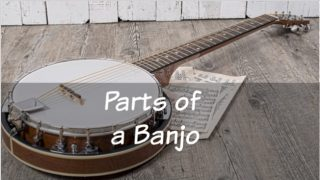 Know The Parts of a Banjo: 5 String Banjo Components
