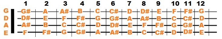 Bass Guitar Notes Chart