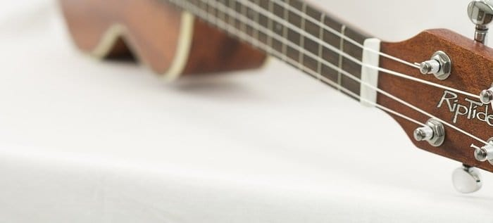 Best Ukulele Blogs