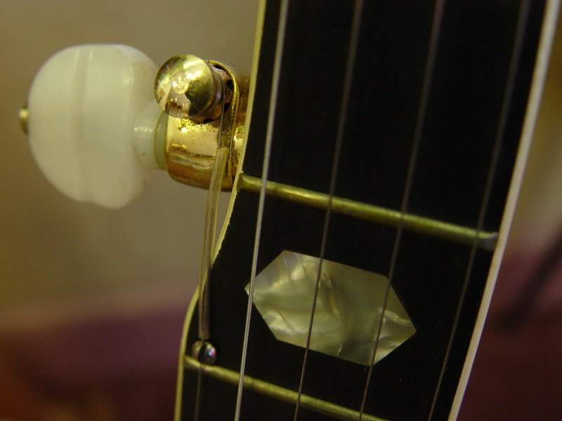 5th Banjo String Peg