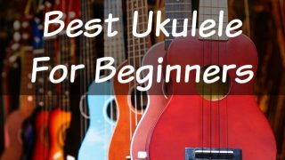 The 2018 Guide to the Best Ukulele for Beginners!