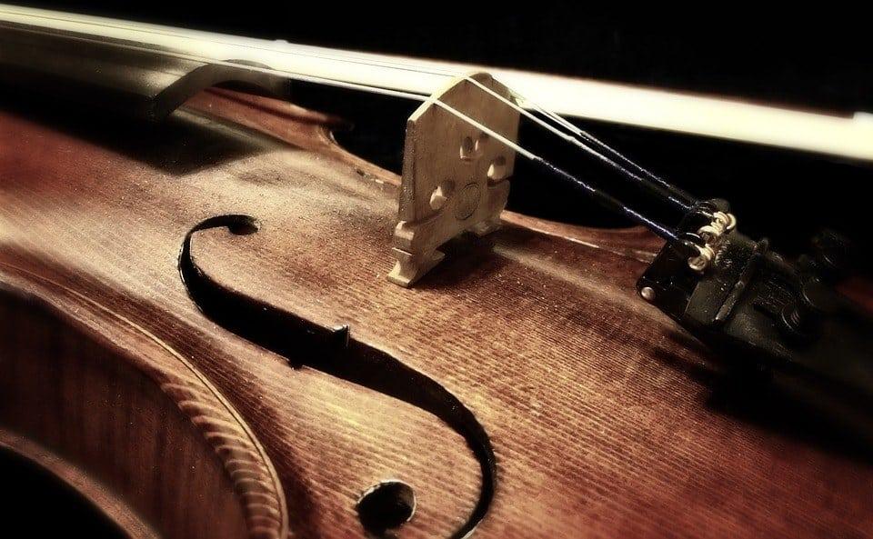 Common Fiddle Accessories