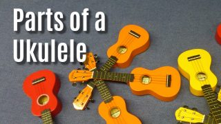 The Parts of a Ukulele: Learn Uke Anatomy 101!