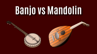 Banjo vs Mandolin: Comparing the Banjo and the Mandolin!